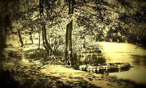 Na stvorenom jezercetu Risto je nabavio čamce, nekadašnje
