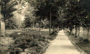 Veliki park, centralna staza u doba predsednika Diše Vučičevića