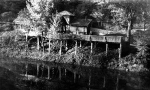 Kafana Veliki park i veštačko jezerce