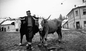 Era sa Mujom i Hasom na Drvarskom pijacu 1962.