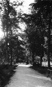 Veliki park pre gradnje sporske hale