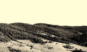 Šume i proplanci užičkoga kraja