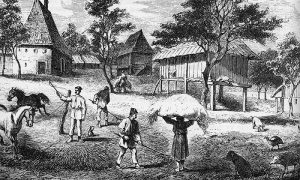 Jedno napredno srpsko seosko domaćinstvo (Kanicova ilustracija)