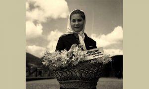 Zlatiborski narcisi za sva vremena (foto Ilija Lazić)