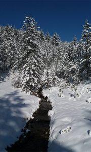 Planinarenje na Veliku i Malu Grudu (foto: Ceca i Milica)