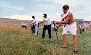 Kosidba na Zlatiboru 5. avgusta 1995.