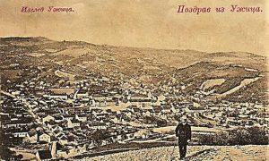 Mladi Rista Tešić na Zabučju pre nego ga je pošumio