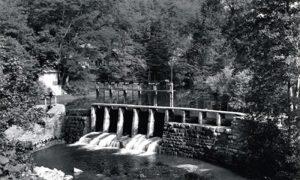 Brana u Velikom parku na čijem jezercetu je dovarjaške klince učio da plivaju Aco Dejović