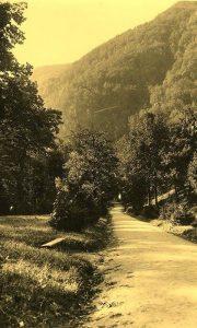 Glavna staza Velikog parka šezdesetih godina 20. veka