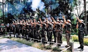 Počasna paljba na Dovarju, obeležavanje Dana borca 1996.
