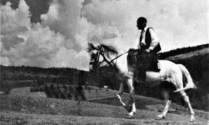 Zlatiborac na konju u Tić polju