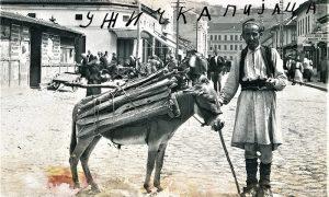 Seljak prodaje drva sa konjčeta na Žitnom pijacu