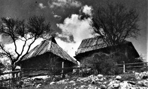 Kolibe na Oku (foto Vlajko Kovačević)