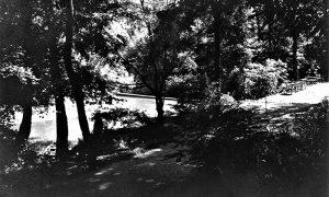 Staza, stolovi kod istočnika, jezerce i brana u vreme Ristinog parka