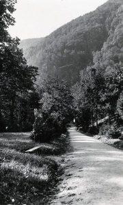Centralna staza Velikog parka šezdesetih godina 20. veka u proleće