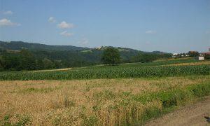Polja i pogled ka brdima severno od Karana