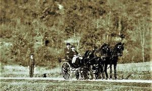 Aleksa Popović u svojim tek kupljenim čezama koje vuku arapski plemeniti konji
