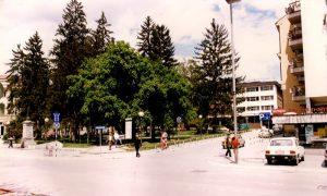 Parčić sa velikim borovima 1996.god.