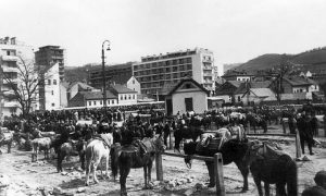 Parking konjića i magarića ispred Tabane i Dragove vodenice