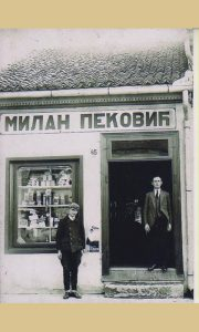 Radnja Milana Pekovića