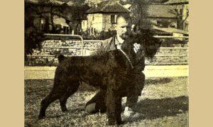 Brat Soda je ekspert za pse šnaucere (novinska fotka)