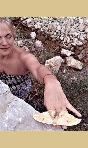 Ružicin žuti užički leptir lepotan iz Vrela