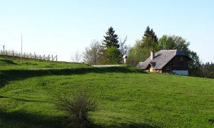 Danas kuća Đuričića na Tari