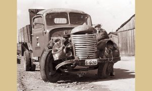 Ulupani kamion Tam