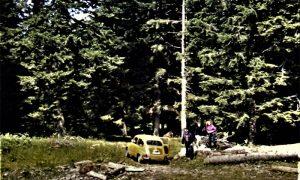 Moj moj prvi auto Zastava 750 vozio nas na izlet na Taru