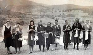 Pletilje iz Sirogojna 1963. god.