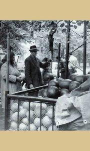 Sremac Vlada Nedeljković prodaje lubenice
