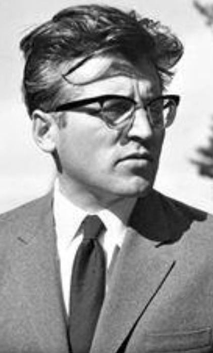 Mladi pisac Dobrica Ćosić