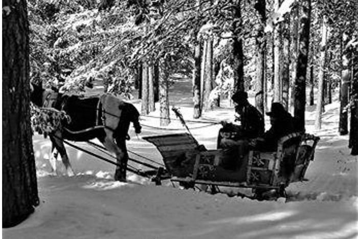 Zima na Zlatiboru