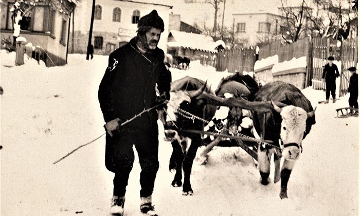 Sve na sankama, potkovanicama, bobovima šlicugama bi se sabralo u Jug Bogdanovu ulicu a odatle do sve do Kasapčića mosta...