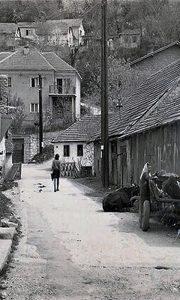 Ulica u kojoj su živeli Adžići na Rakiskom u vreme Svetozara