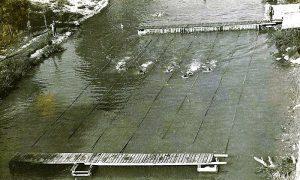 Do izgradnje plivačkog bujica je stalno nosila plivalište koje su plivači svake godine poravljali uz pomoć Pujda Kovača