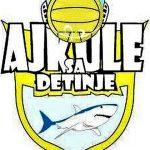 """Logo Plivačkog kluba """"Ajkule sa Đetinje"""""""