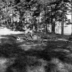 Dežurni pripema logorsku vatru u izviđačkom kampu na Vodicama