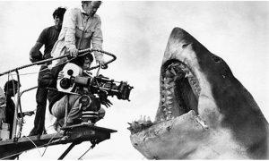 Sa snimanja prvog blokbastera Ajkula